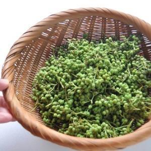 実山椒の水煮