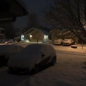ドカンと雪が降りました