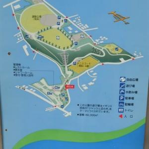 戸塚区の公園へ