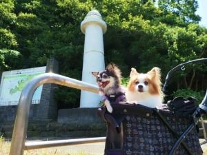 ワンコと観音崎公園へ