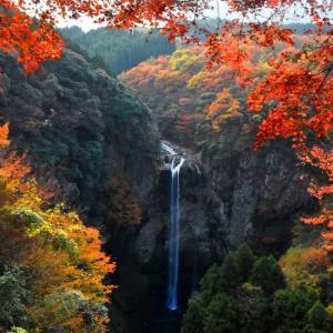 染まる名瀑・宇佐市の福貴の滝
