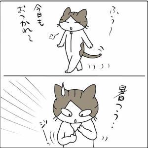 第564話 すずちゃんの正体は!?