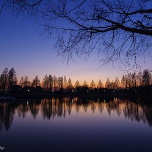 夕暮れ時の川越水上公園
