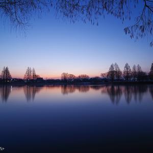 朝の川越水上公園