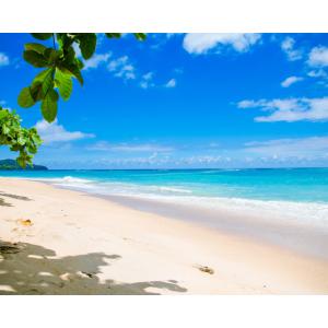 沖縄の美しい海を見に行くぜ!とう今夏のエア旅行