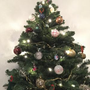 クリスマスツリーとおこた出しました。