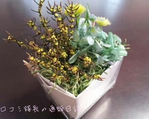 【フェリシモ】プリザーブド・アレンジボックスの会 3回目