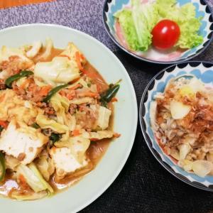 【キットオイシックス】厚揚げと野菜の麻婆風炒め