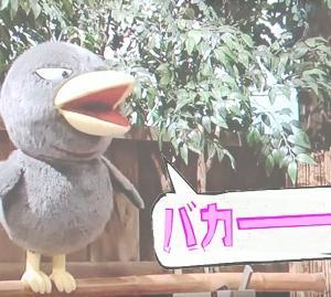 台風19号、憎し( `ー´)ノ
