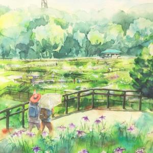 透明水彩画「五月晴れ(菖蒲園)」&アートエッセイ「遠回りの原因にやっと気づく」