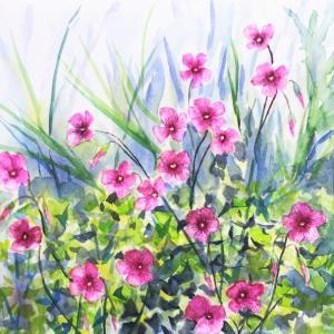 趣味の透明水彩画「気づき、愛情、アイデア&チャレンジ♪」~良い絵を描くためのキーワード~