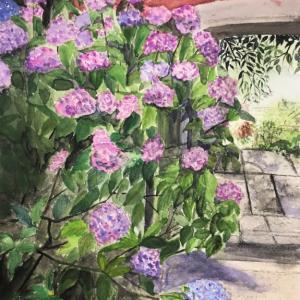7月のカルチャーハウス香里ケ丘講座&アートエッセイ「失速する木々」
