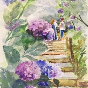紫陽花の表現は・・・やっぱり「明暗」への理解につきる