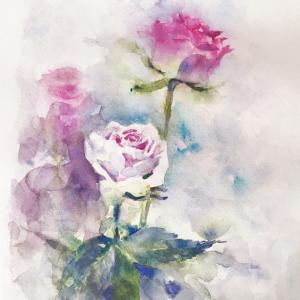 Nさんと薔薇をスケッチ ~水張り:水彩紙の裏に水を塗る方式~