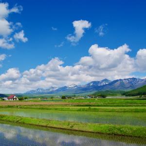 初夏の十勝岳連峰を望む