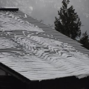 荒天ながら積もらない雪で