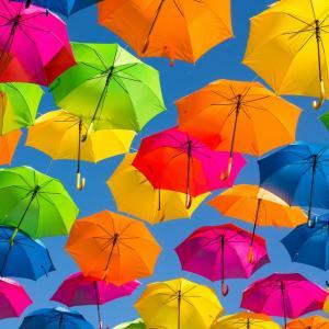 Umbrellaは「日傘」という意味です
