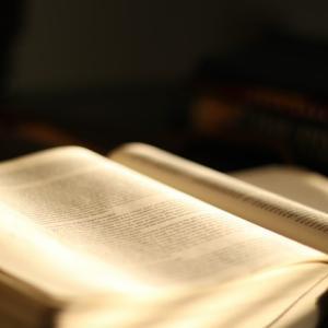 専門分野の知識だけでは足りない翻訳という仕事、どう知識を身につけていくか?