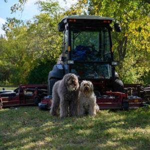 巨大芝刈り機