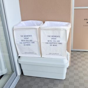 ダイソーの大容量のPP収納ボックスで資源ごみの分別。
