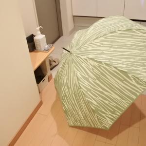雨傘を20年ぶりに新調しました&お買い物マラソンポチレポ6店舗