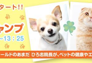 「どうぶつスマイルジャンプ」44回目 Dear Pets☆(ディアペッツ)からかま りや先生