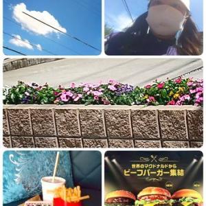 ★昨日の大雨忘れるぐらいの お空の青(女将FBから)