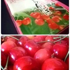 ★Yamanashi Sweet Cherry(女将FBから)