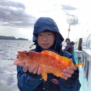 イワシ泳がせ釣りで出船しました。