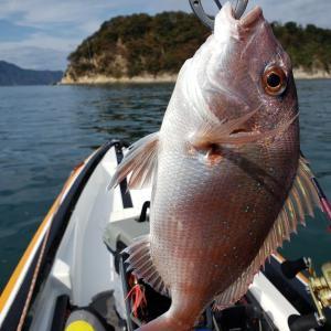 鯛ラバで【釣れる人】【釣れない人】