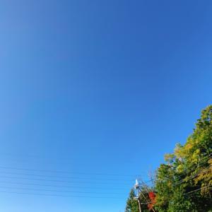 昨日の空の写真を何枚か☆