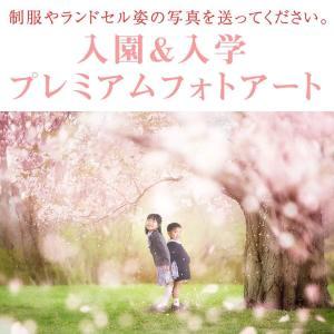 上手に撮れる!桜のアートの撮影方法♡