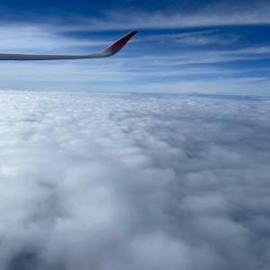 航空マイル261