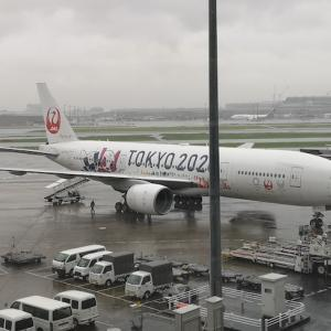 航空マイル238