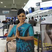 祝!スリランカ航空増便決定!7月20日~週5便運航になります。
