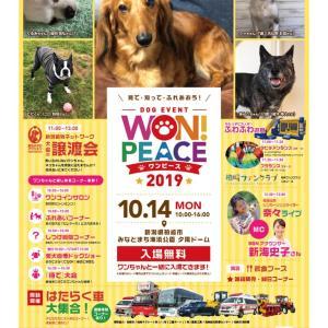 WON!PEACE2019