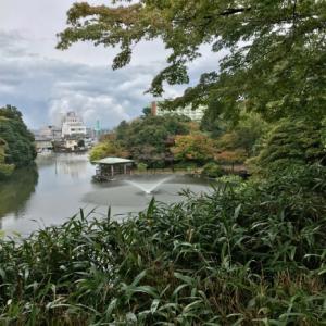 久しぶりに古城公園に行ってきました。