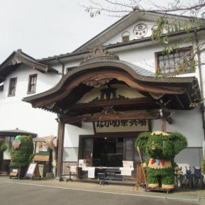 日光旅行3=ながめ公園菊祭り2
