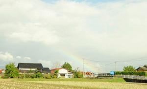 虹に誘われて・・・NANAIRO