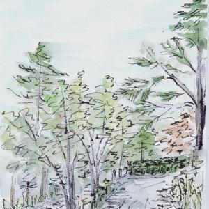天神山公園の4枚