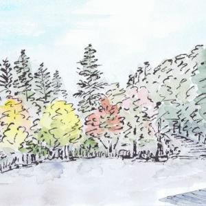 紅葉の始まった紅桜公園(2)