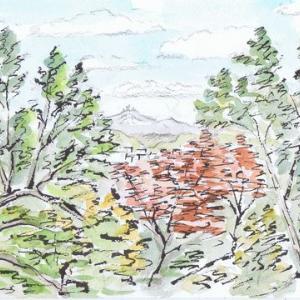 晩秋の天神山公園(3)