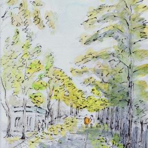 晩秋の中島公園