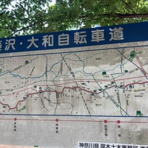 藤沢大和自転車道