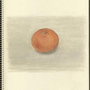 ミカン Orange