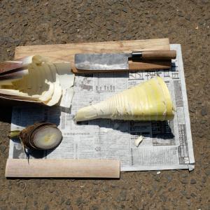 タケノコ(筍)の皮の剥き方