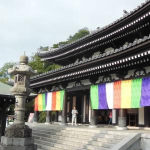 8月10日の朝参り~鎌倉:長谷寺の四万六千日~