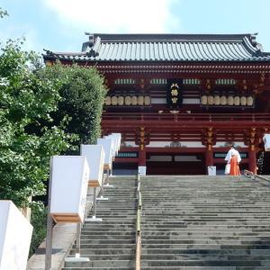 今日から鶴岡八幡宮のぼんぼり祭
