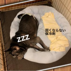 台風10号 (ノД`)