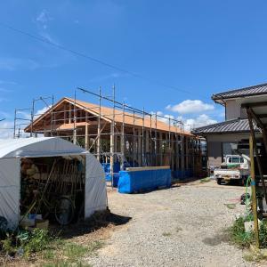 屋根地と台風養生